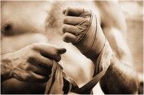 Boxerhands1